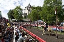 Oswald von Wolkenstein Riding Tournament